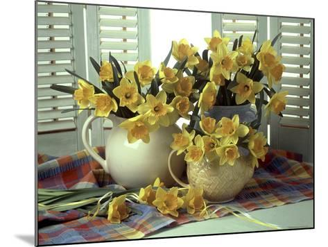 Spring Flower Arrangement of Narcissus in Jugs, Checked Cloth-Erika Craddock-Mounted Photographic Print