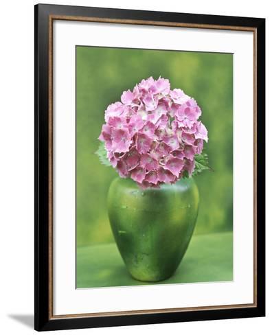 Hydrangea Macrophylla, Single Flower Arrangement in a Green Vase-Ron Evans-Framed Art Print