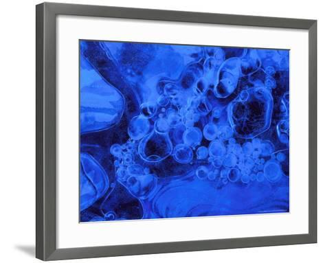 Air Bubbles Trapped in Ice-Mark Hamblin-Framed Art Print