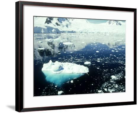 Icebergs, Antarctic Peninsula-Rick Price-Framed Art Print