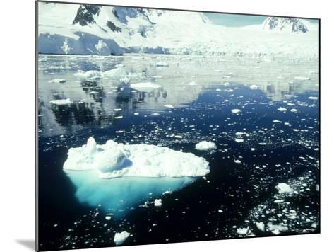 Icebergs, Antarctic Peninsula-Rick Price-Mounted Photographic Print