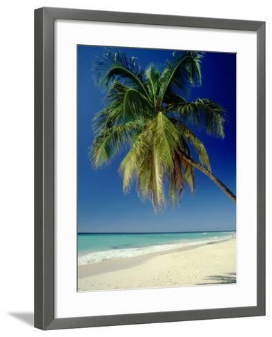 Beach, West Indies-Mike England-Framed Art Print