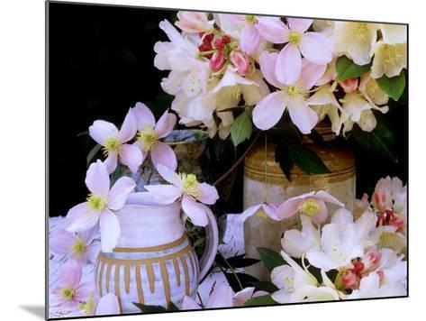 """Rhododendron Yak Hybrid """"Golden Torch"""" and Pink Clematis Montana (Travellers Joy)-James Guilliam-Mounted Photographic Print"""