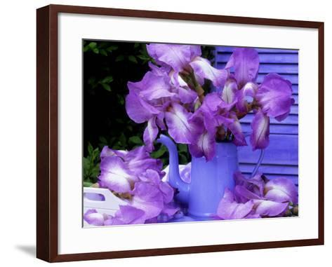 """Bearded Iris """"Blue Shimmer"""" in Blue Coffee Jug on Table with Blue Shutter in Background-James Guilliam-Framed Art Print"""