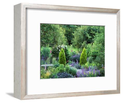 View into Country Garden with Perennials and Small Trees Summer-Lynn Keddie-Framed Art Print
