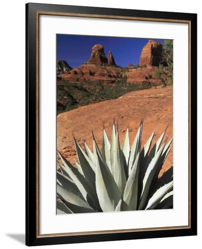 Agave Cactus and Red Rock Formations-Adam Jones-Framed Art Print