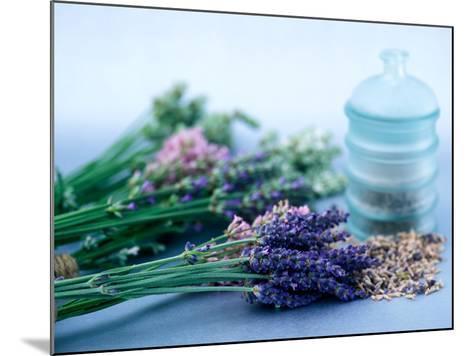 Cut Lavender, Dried Lavender & Glass Pot-Lynn Keddie-Mounted Photographic Print
