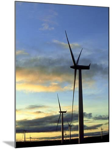 Wind Turbines at Sunset, Caithness, Scotland-Iain Sarjeant-Mounted Photographic Print