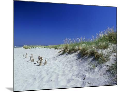 Sand Dunes and Marram Grass, West Sussex, UK-Ian West-Mounted Photographic Print