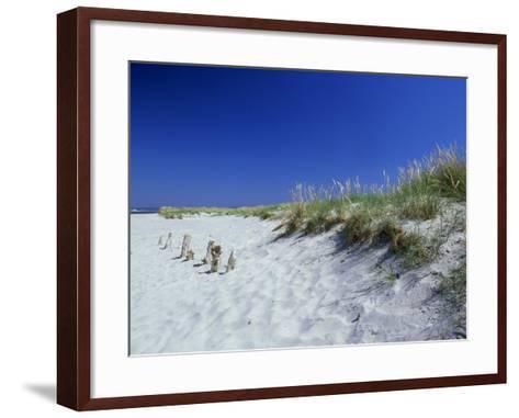 Sand Dunes and Marram Grass, West Sussex, UK-Ian West-Framed Art Print