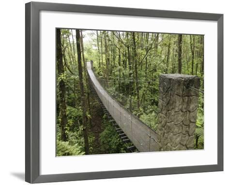 Costa Rica--Framed Art Print