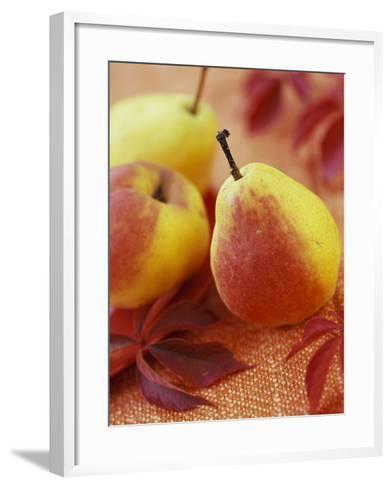 Three Pears-Vladimir Shulevsky-Framed Art Print
