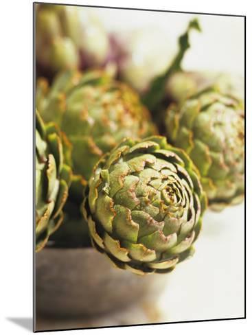 Fresh Artichokes-Debi Treloar-Mounted Photographic Print
