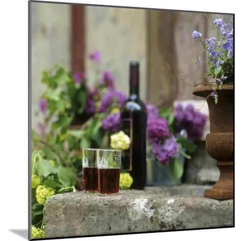 Red Wine Glasses & Red Wine Bottle on Stone Trough with Flowers-Christine Gill?-Mounted Photographic Print