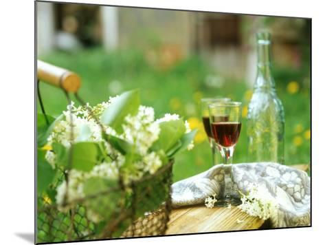 Two Glasses of Red Wine in Springtime Garden-Christine Gill?-Mounted Photographic Print