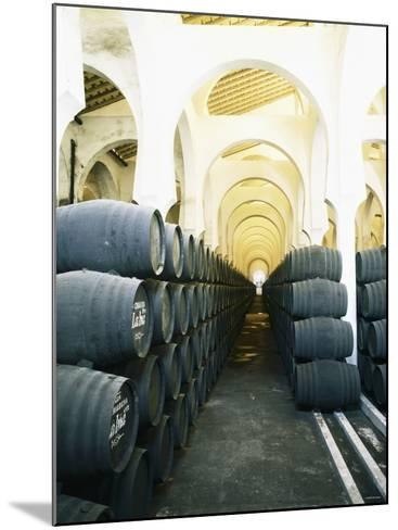 La Mezquita Winery (Jerez de la Frontera, Spain)-Hendrik Holler-Mounted Photographic Print
