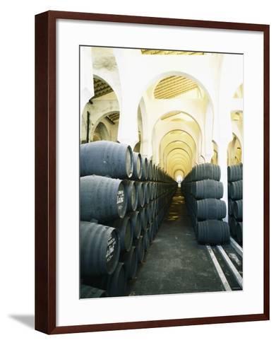 La Mezquita Winery (Jerez de la Frontera, Spain)-Hendrik Holler-Framed Art Print