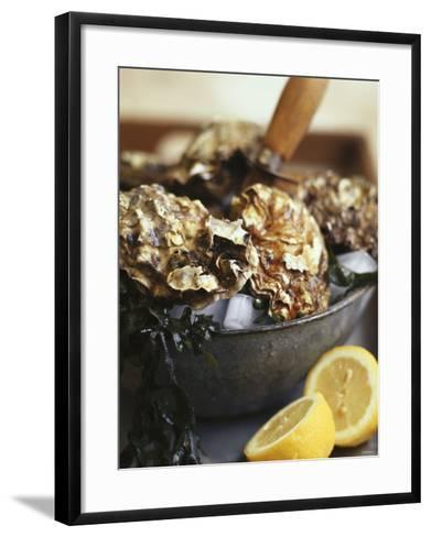 Fresh Oysters and Lemon-Debi Treloar-Framed Art Print