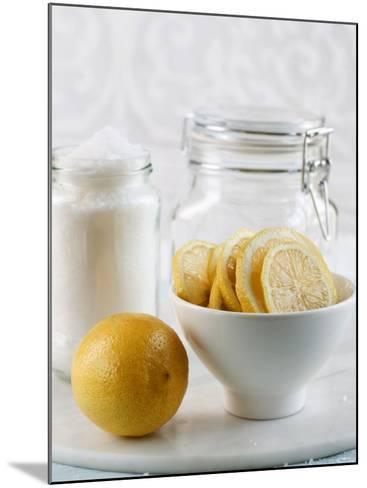 Ingredients for Salt-Pickled Lemons-Danya Weiner-Mounted Photographic Print
