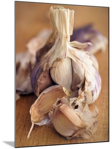 A Dried Garlic Bulb-Steven Morris-Mounted Photographic Print