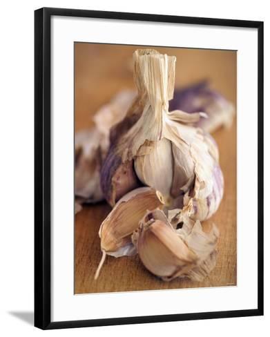 A Dried Garlic Bulb-Steven Morris-Framed Art Print