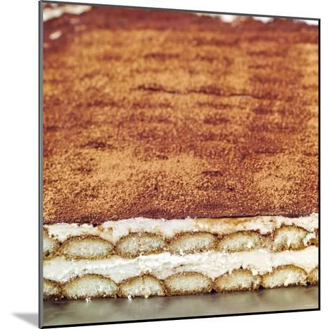 Tiramisu (Layered Dessert with Mascarpone Cream, Italy)--Mounted Photographic Print