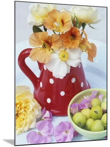Flowers in Jug and a Bowl of Wild Apples-Linda Burgess-Mounted Photographic Print
