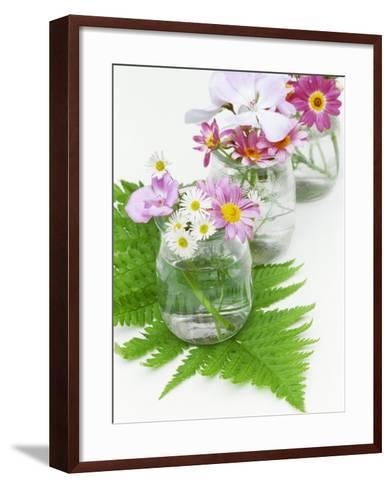 Geraniums and Chrysanthemums in Jars with Fern-Linda Burgess-Framed Art Print