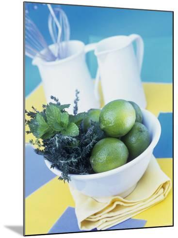 Limes, Mint and Thyme in a Bowl-Linda Burgess-Mounted Photographic Print