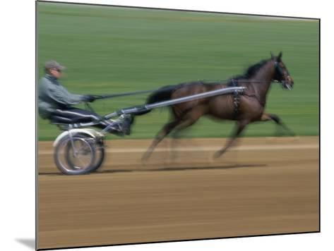 Red Mile Harness Track, Lexington, Kentucky, USA--Mounted Photographic Print