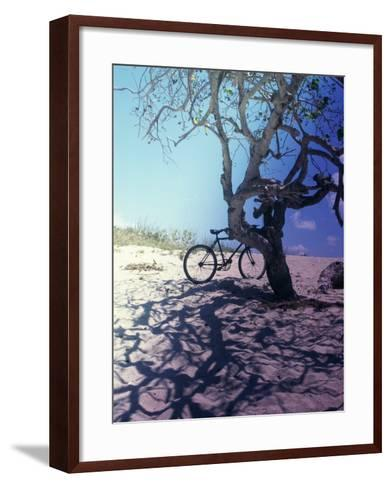 Bicycle Parked Against a Tree--Framed Art Print