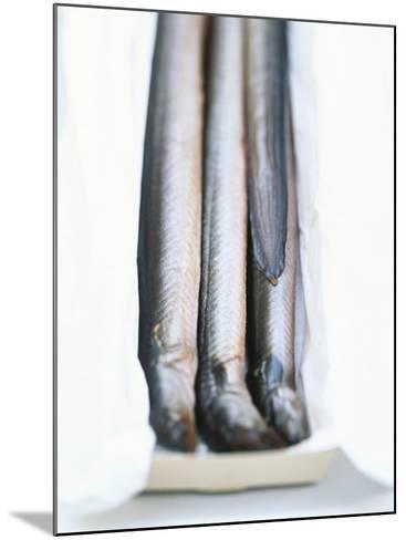 Four Smoked Eels in a Box-Peter Medilek-Mounted Photographic Print