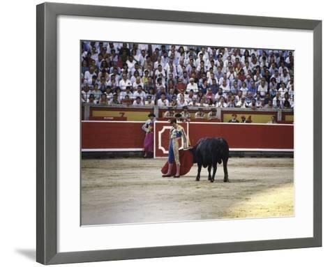 Bullfight, Pamplona, Spain--Framed Art Print
