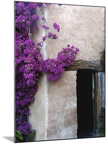 Carmel Mission, Carmel, California, USA--Mounted Photographic Print