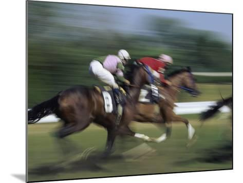 Thundering Hooves--Mounted Photographic Print