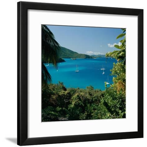 Virgin Islands National Park St. Johns Us Virgin Islands--Framed Art Print