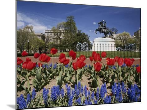 Andrew Jackson Statue, Washington, D.C., USA--Mounted Photographic Print