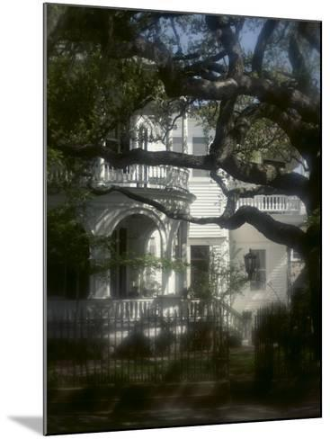 Trees in Front of a Mansion--Mounted Photographic Print