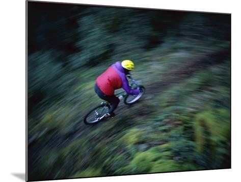Sierras, California, USA--Mounted Photographic Print