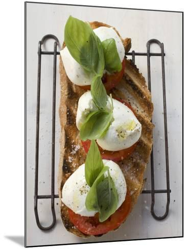 Tomatoes, Mozzarella and Basil on Toasted Bread--Mounted Photographic Print