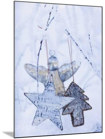Stars and Silver Angel on Snowy Branch--Mounted Photographic Print
