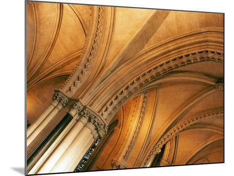 Christ Church Cathedral Dublin, Ireland--Mounted Photographic Print