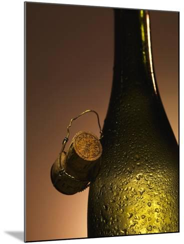 Champagne Bottle with Cork-Joerg Lehmann-Mounted Photographic Print