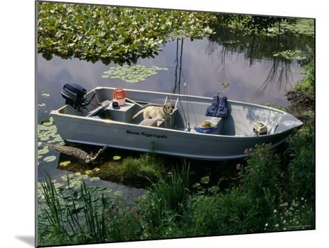 A Dog in a Boat on a Pond--Mounted Photographic Print