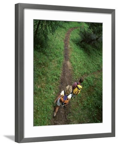 High Angle View of a Young Couple Hiking on a Forest Trail--Framed Art Print
