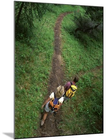 High Angle View of a Young Couple Hiking on a Forest Trail--Mounted Photographic Print