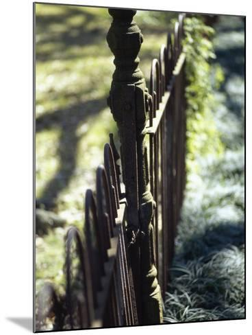 Close-up of a Pointed Metal Gate--Mounted Photographic Print
