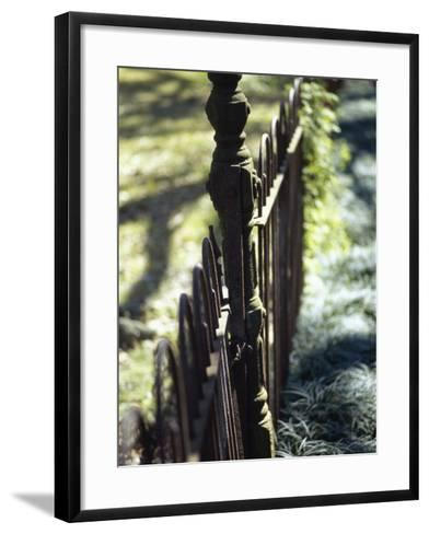 Close-up of a Pointed Metal Gate--Framed Art Print