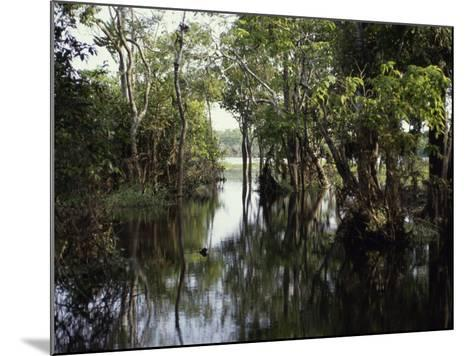 Amazon River, Brazil--Mounted Photographic Print