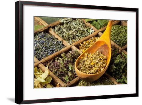 Herbs- jbphotographylt-Framed Art Print